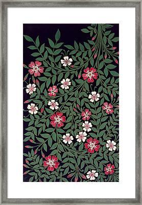 Floral Design Framed Print by Owen Jones