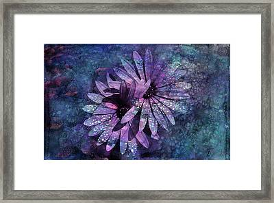 Floral Fiesta - S14c Framed Print by Variance Collections