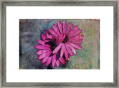 Floral Fiesta  Framed Print by Variance Collections