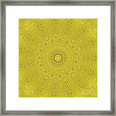 Floral Jackfruit Scale Like Pattern Framed Print by Image World