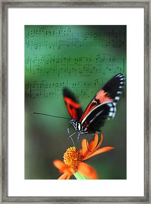 Floral Melody In Green Framed Print by Charlie Photographer