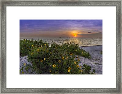Floral Shore Framed Print by Marvin Spates