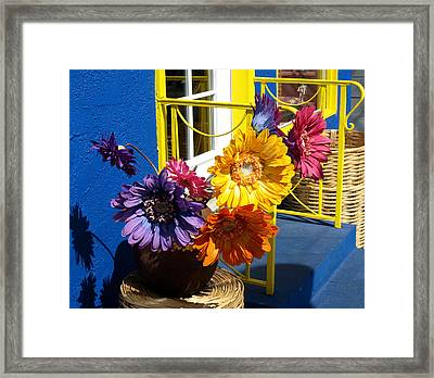 Flores Colores Framed Print by Gia Marie Houck