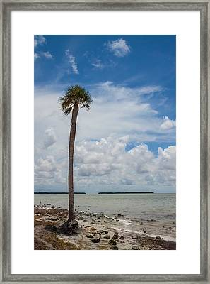 Florida Bay 6943 Framed Print by Rudy Umans