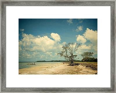 Florida Bay 6947a Framed Print by Rudy Umans