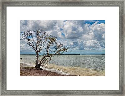 Florida Bay 6961 Framed Print by Rudy Umans