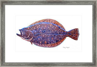 Flounder Framed Print by Carey Chen