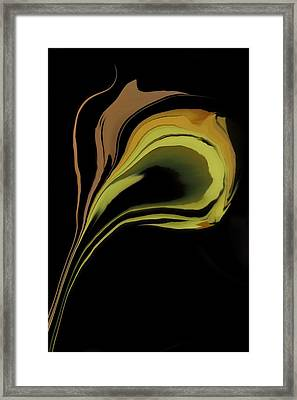 Flower Abstract Framed Print by Art Spectrum