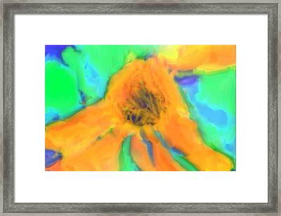 Flower Abstract Framed Print by Tom Gowanlock