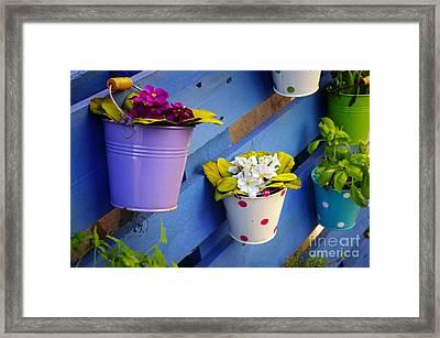 Flower Baskets Framed Print by Carlos Caetano