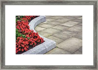 Flower Bed Framed Print by Tom Gowanlock