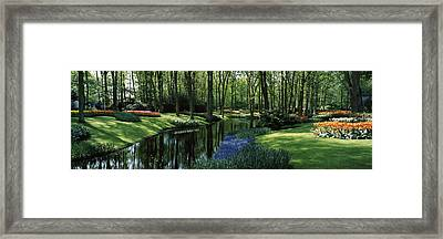 Flower Beds And Trees In Keukenhof Framed Print by Panoramic Images