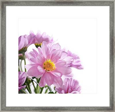 Flower Bouquet Framed Print by Jelena Jovanovic