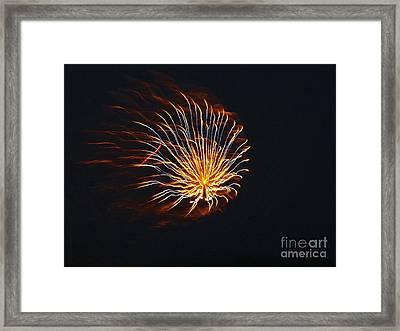 Flower Fireworks Framed Print by Brigitte Emme