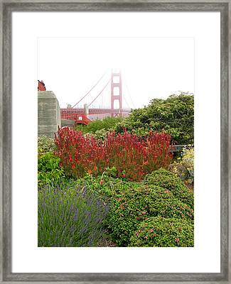 Flower Garden At The Golden Gate Bridge Framed Print by Connie Fox
