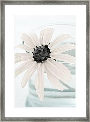Flower In A Vase Still Life Framed Print by Frank Tschakert