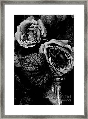 Flower Is Woman Framed Print by Steven Macanka
