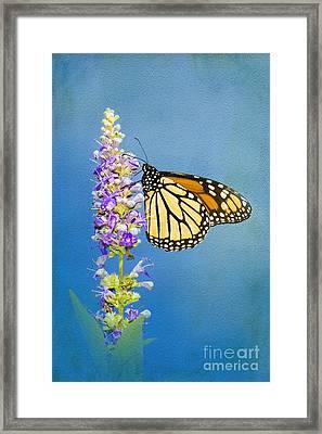Flower Love Framed Print by Betty LaRue