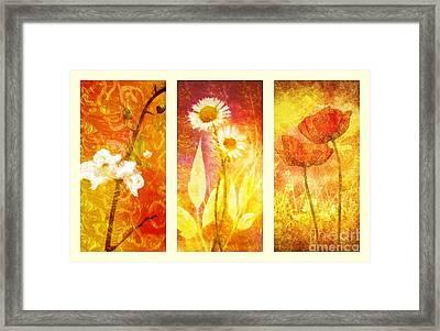 Flower Love Triptic Framed Print by Mo T