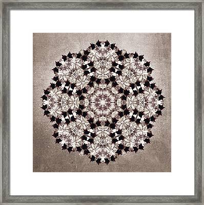 Flower Mandala Framed Print by Filippo B