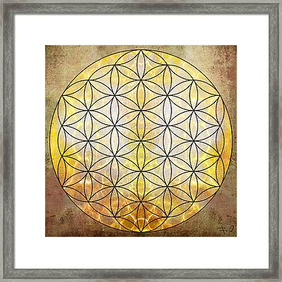 Flower Of Life Gold Framed Print by Filippo B