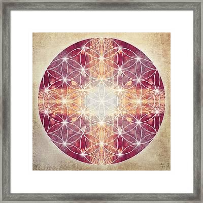 Flower Of Life Magenta Framed Print by Filippo B
