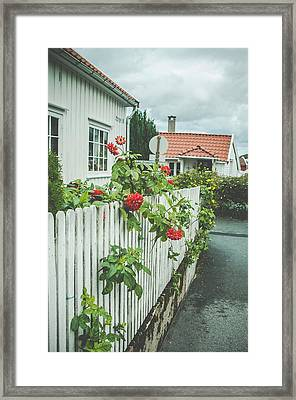 Flower On The Fence Framed Print by Mirra Photography
