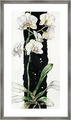 Flower Orchid 05 Elena Yakubovich Framed Print by Elena Yakubovich