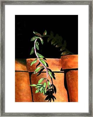 Flower Pots Framed Print by Karyn Robinson