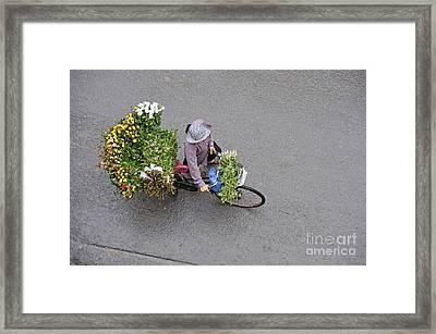 Flower Seller In Street Of Hanoi Framed Print by Sami Sarkis