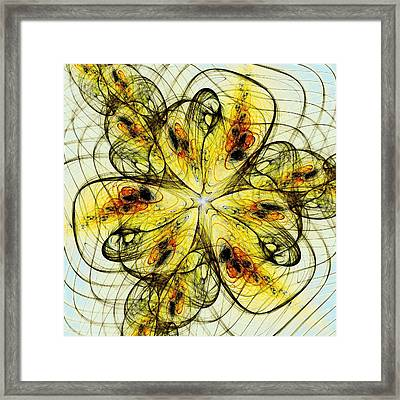 Flower Sketch Framed Print by Anastasiya Malakhova