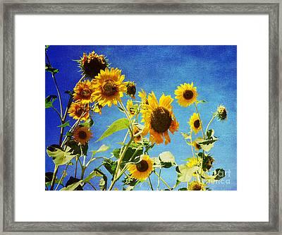 Flower -sunflower Surprise Framed Print by Luther   Fine Art
