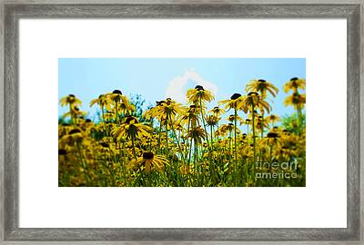 Flower - Sunflower Worshipers - Luther Fine Art Framed Print by Luther   Fine Art