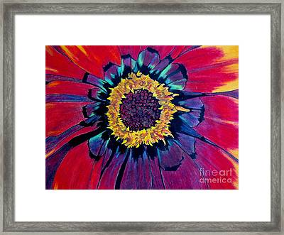 Flowerburst Framed Print by Rory Sagner