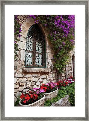 Flowering Vine Grows On Wall Of Home Framed Print by Brian Jannsen