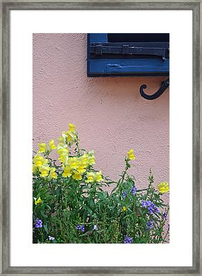 Flowers And Window Frame Framed Print by Bruce Gourley