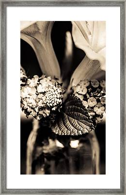 Flowers In A Jar Framed Print by Marco Oliveira