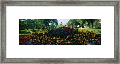 Flowers In A Park, Grant Park, Chicago Framed Print by Panoramic Images