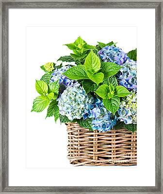 Flowers In Basket Framed Print by Boon Mee