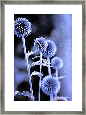 Flowers In The Metal Framed Print by Toppart Sweden