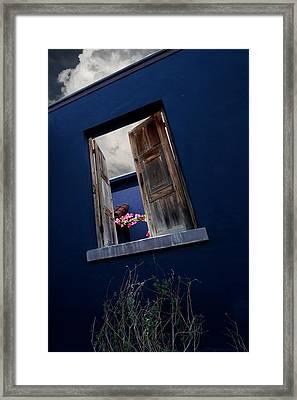 Flowers In The Presidio Framed Print by Joe Kozlowski