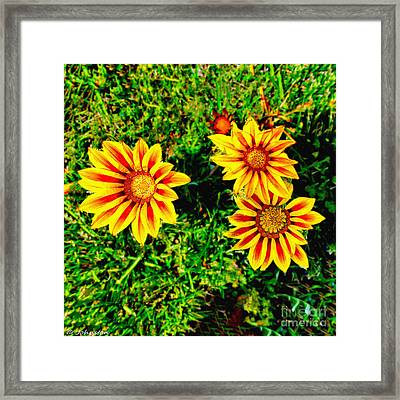 Flowers Thousand Trails  Framed Print by Bob and Nadine Johnston