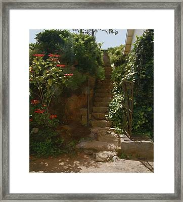 Flowery Stairway Framed Print by Dominique Amendola