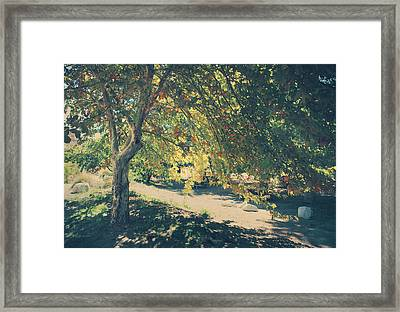 Flowing Golden Locks Framed Print by Laurie Search