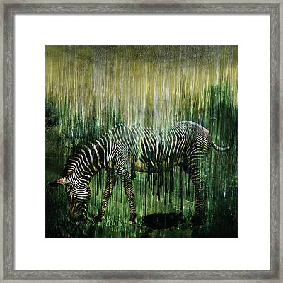 Flowing Stripes Framed Print by Marian Voicu