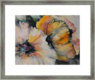 Fluffy And Free Framed Print by Shelley Olivier