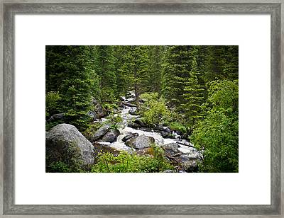 Fluid Motion - Crazy Woman Canyon - Crazy Woman Creek - Johnson County - Wyoming Framed Print by Diane Mintle