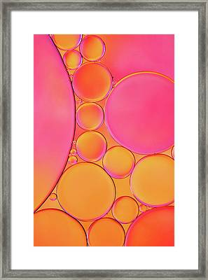 Fluorescent Drops Framed Print by Cora Niele