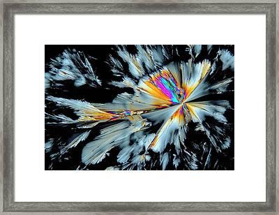 Fluoxetine Drug Framed Print by Antonio Romero