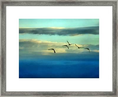 Fly Away Framed Print by Ernie Echols